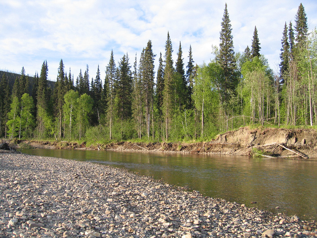 Chena River 48 miles from Fairbanks, AK
