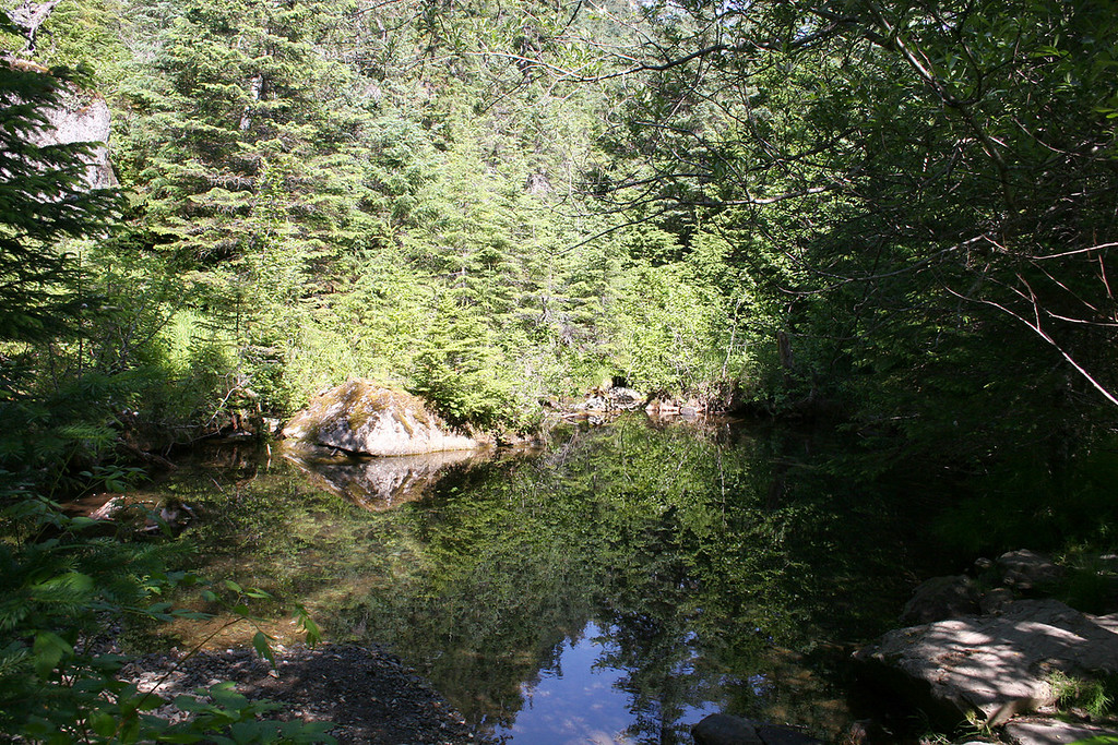 Pond at beginning of trail into Tonsina Point, Seward, AK