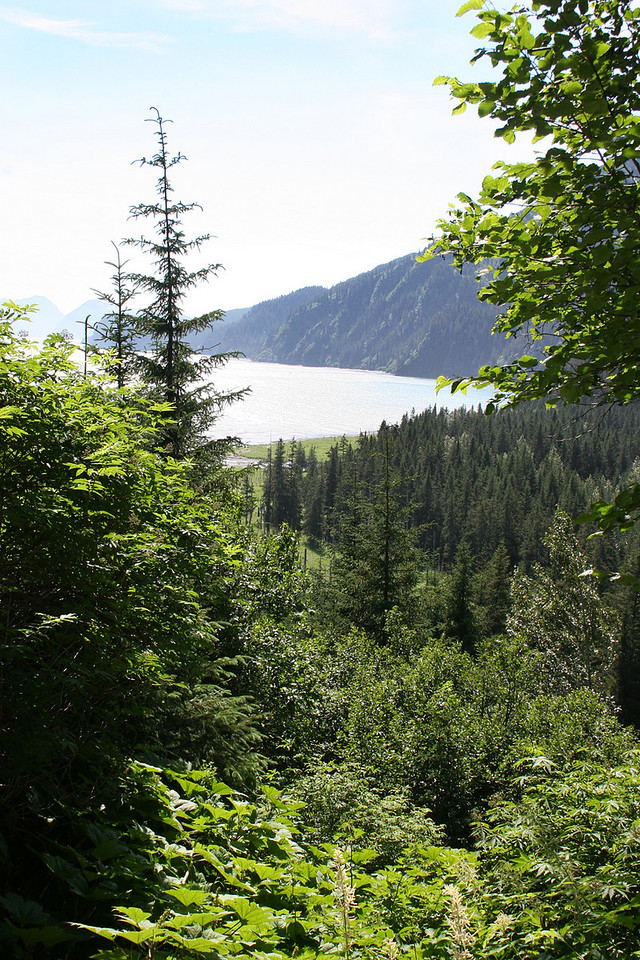 View of Resurrection Bay from trail into Tonsina Point, Seward, AK