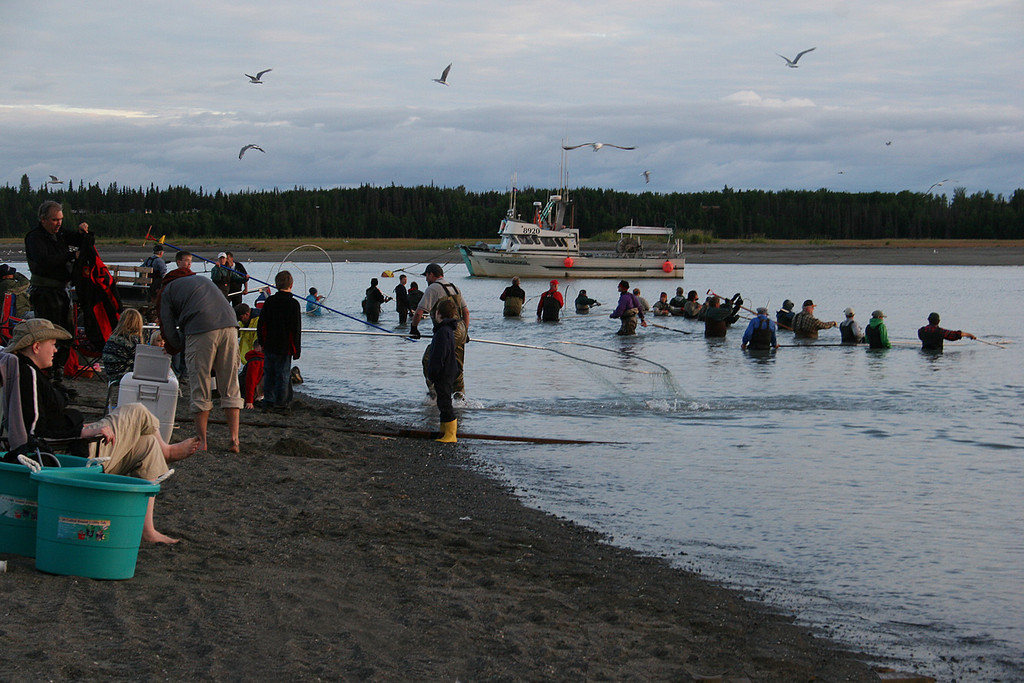 Dip netters at the mouth of the Kasilof River.  Subsistence fishing for locals only.