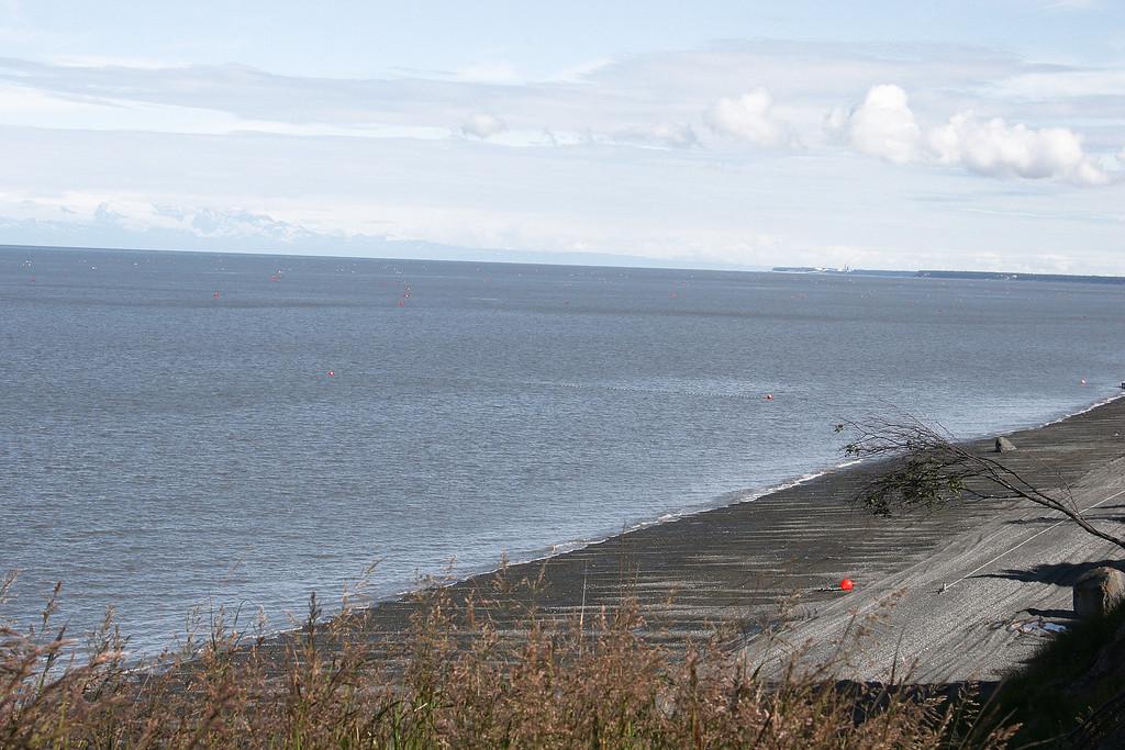 Cook Inlet with fishing buoys, Kenai, AK