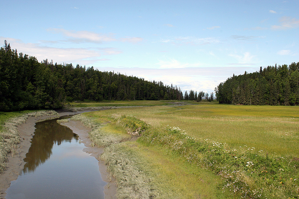 Swanson River in Captain Cook State Recreation Area, Kenai, AK