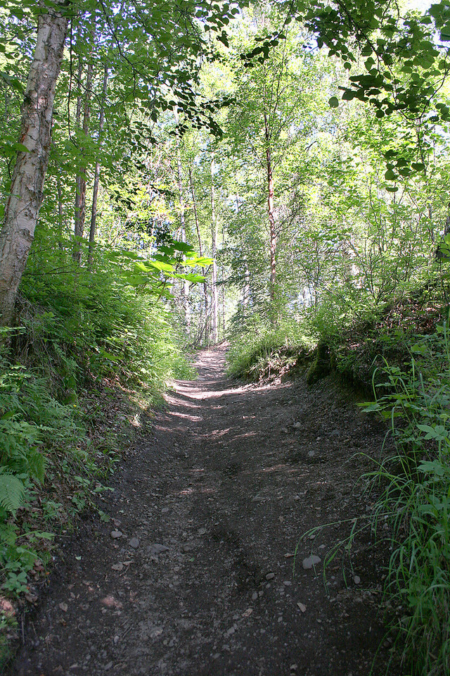 Trail to Thunderbird Falls