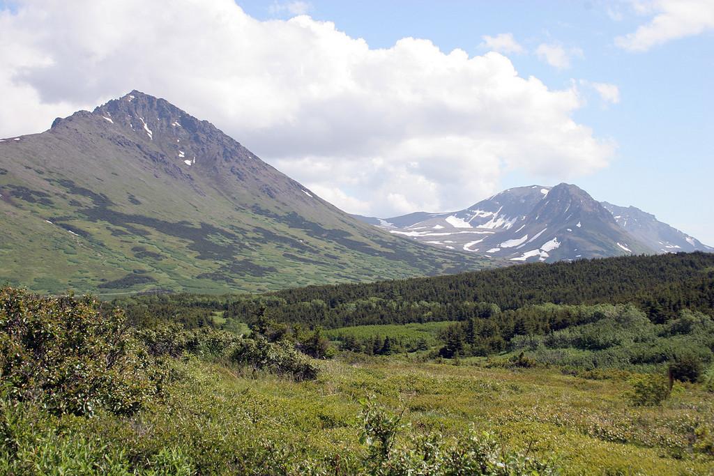 Mountains surrounding the Flattop Mountain trailhead overlook