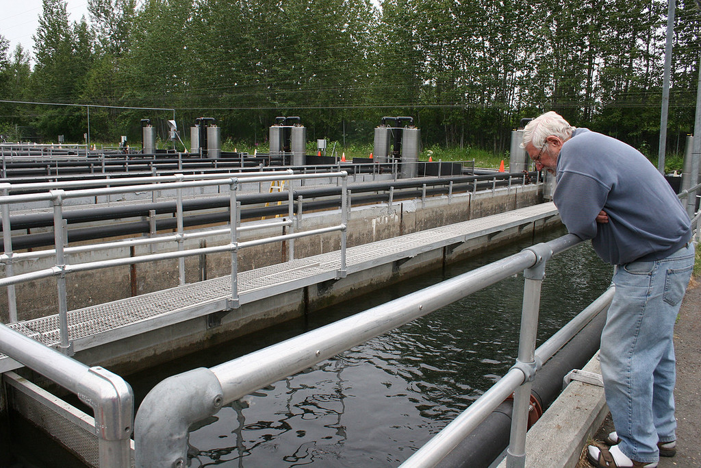 Mike at Elmendorf Fish Hatchery looking at tank holding trout