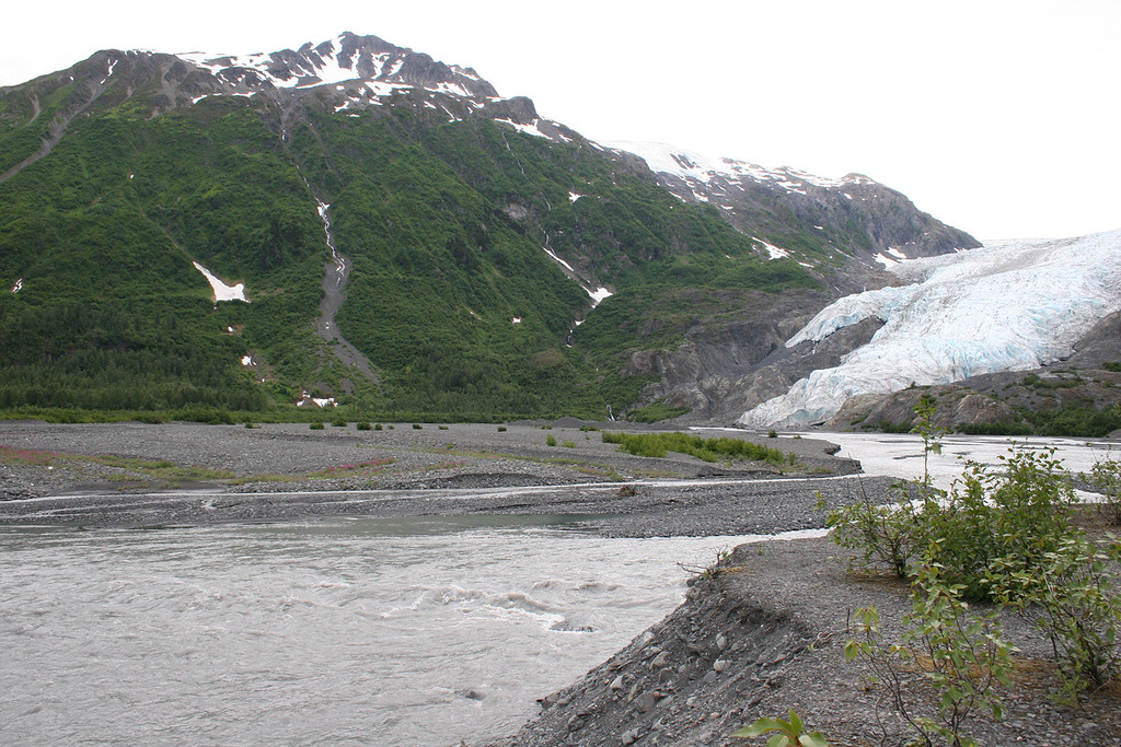 Exit Glacier as it empties into the river