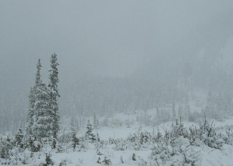 Just past Summit Lake Pass