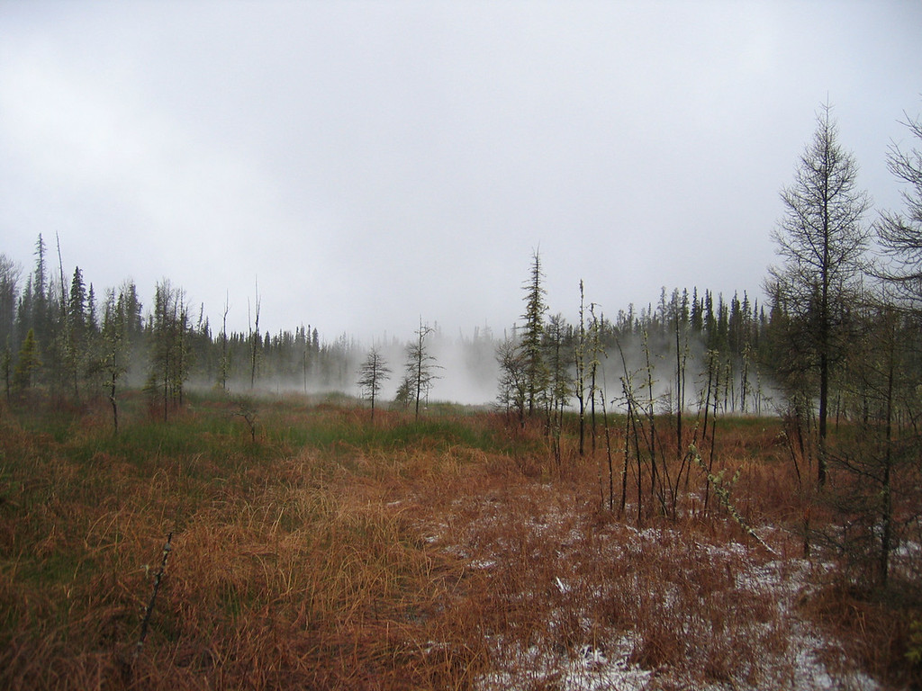 5/13/06 - The misting landscape on the walk into the hot springs