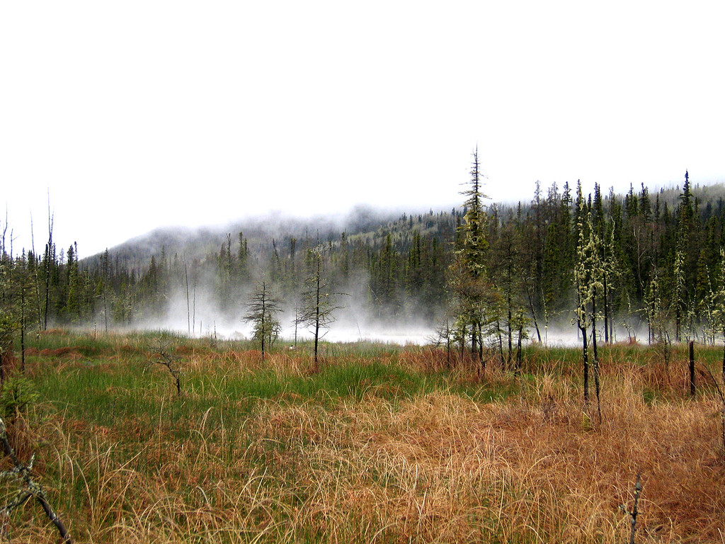 5/14/06 - Misty landscape on the way into the hot springs