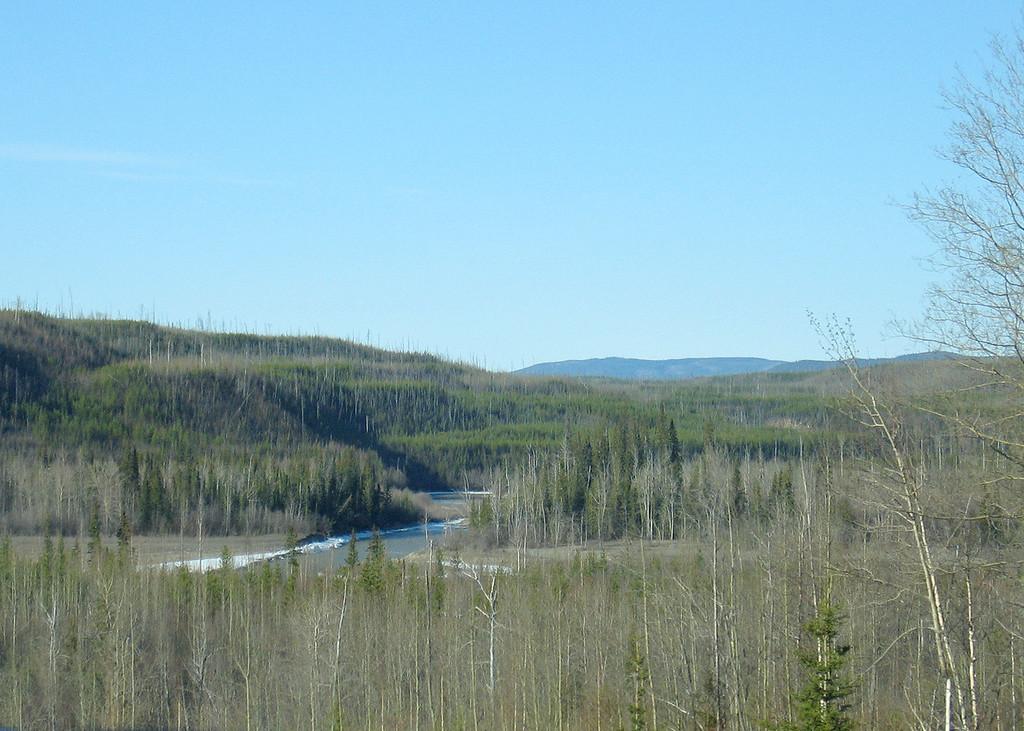 Liard River past Coal River