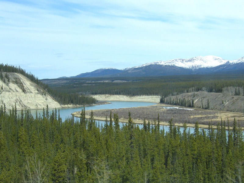 Yukon River about 17 miles from Whitehorse, YT