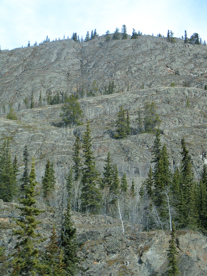 About 25 miles east of Whitehorse, YT