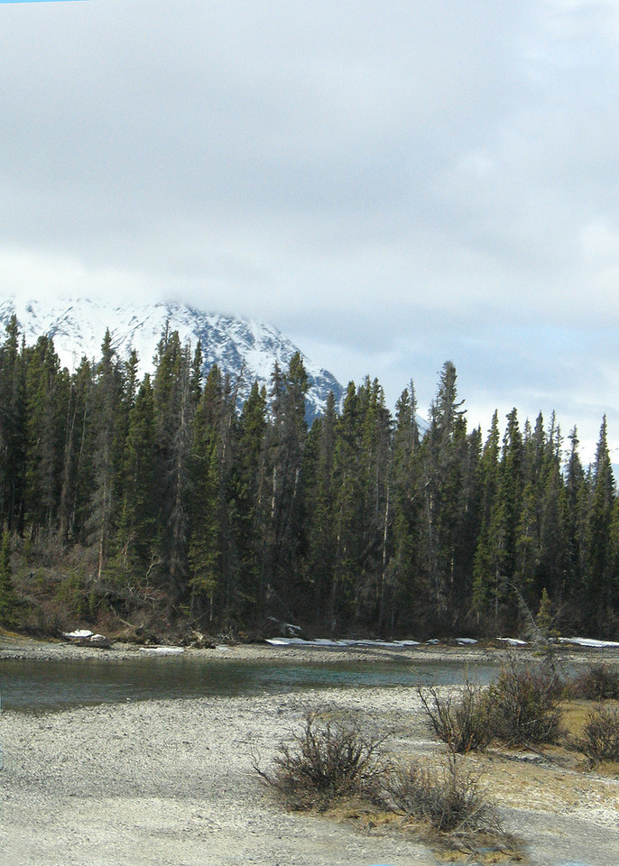 Kathleen River about 30 miles west of Haines Junction