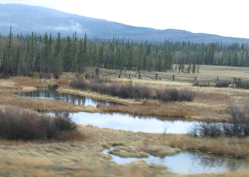 Takhini Salt Flats about 20 miles west of Whitehorse.