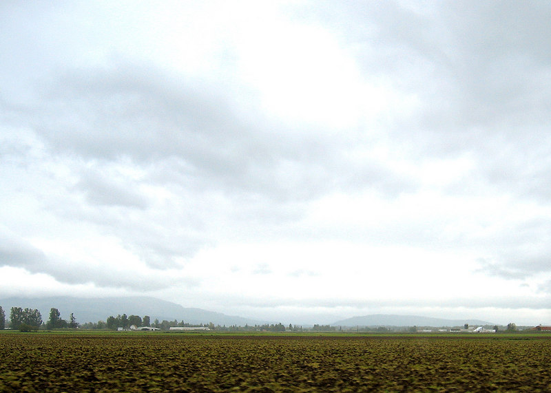 Plowed land as we are coming into Sumas, WA