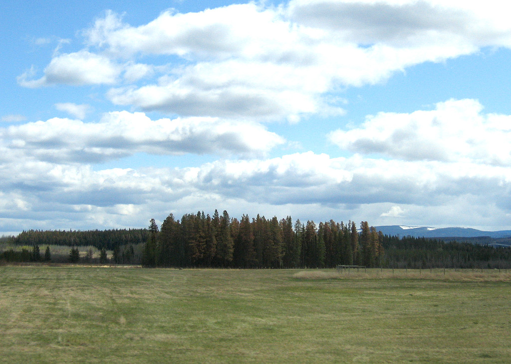 About 10 miles south of Price George, BC