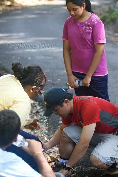 Horin assisting an injured runner during the Lighthouse race.