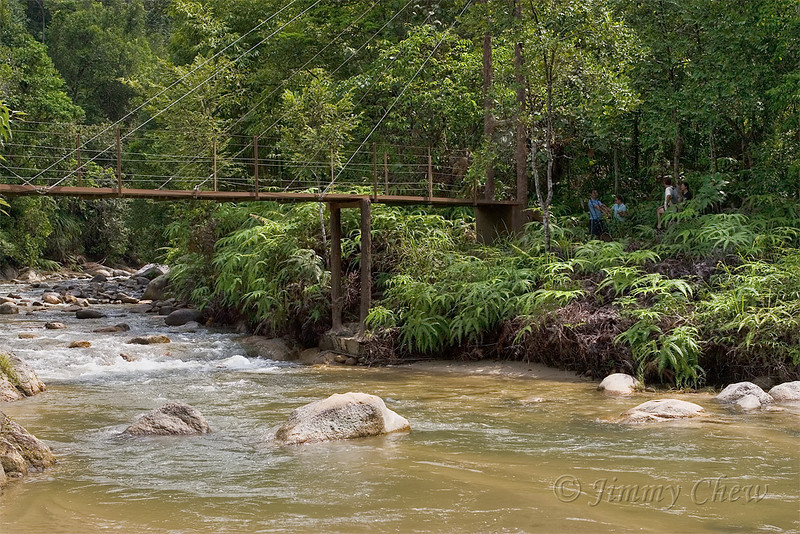 The first stream crossing right after registration. There is a bridge where one does not have to cross the stream.