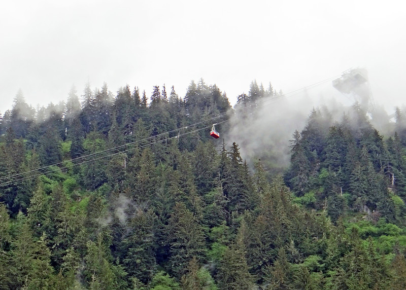 There is a tram that goes up to the top of the mountain for great views.  Since it was so cloudy we decided not to take it.  Hopefully on our next trip to Juneau we will see sunshine.
