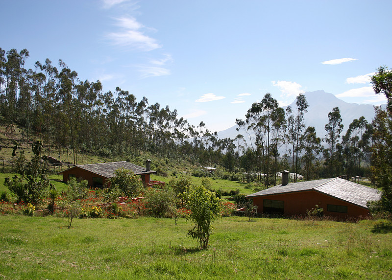 A view of the compound from our casita.