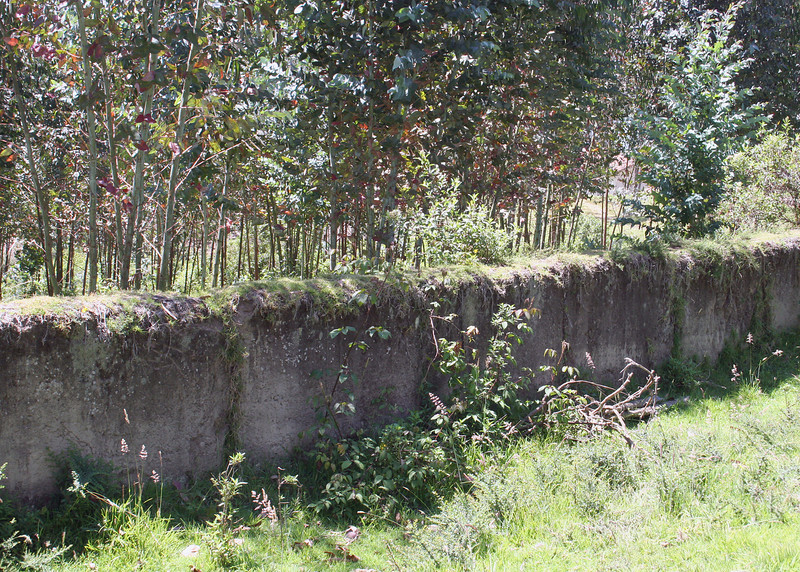 An old wall on the Ali Shungu Mountaintop Resort.