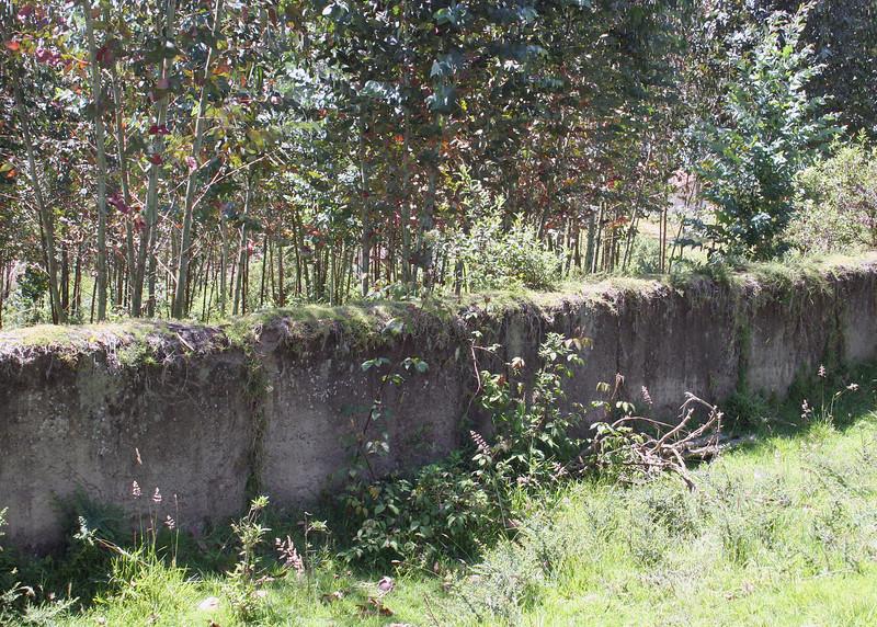 An old wall on the Ali Shungu Mountaintop Resort.