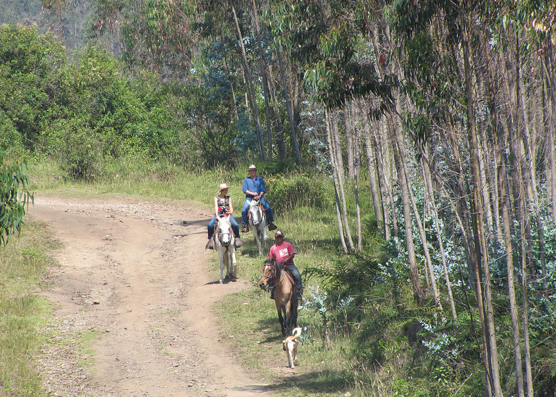 The Ali Shungu Mountaintop Resort offers two hours of horseback riding which is included in the price of your stay.  Here are some of the guests enjoying a ride.  Mike and I ran out of time so didn't go on one.