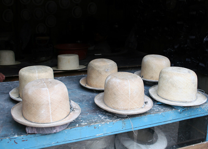 Panama hat mold