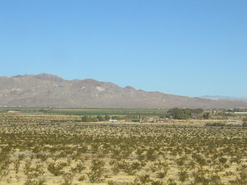 Alfalfa fields in Newberry Springs, CA