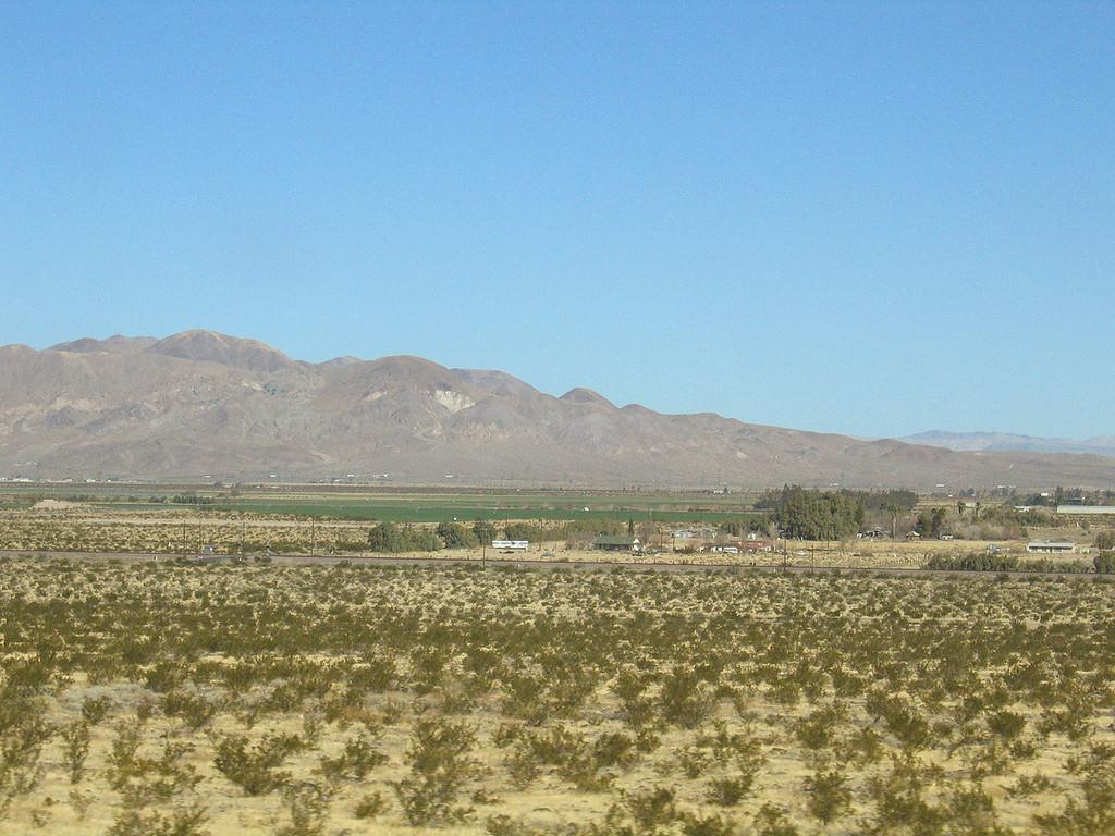 Alfalfa fields in Newberry Springs, CA