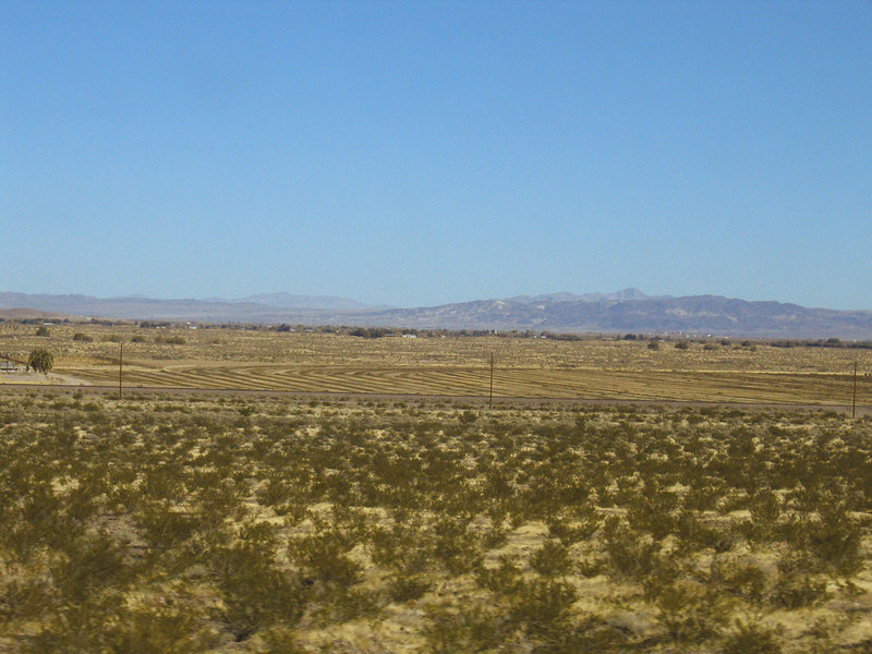 Fields in Newberry Springs, CA