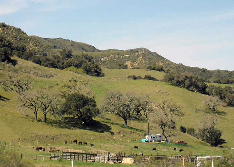 Hills between Santa Barbara, CA and Paso Robles, CA