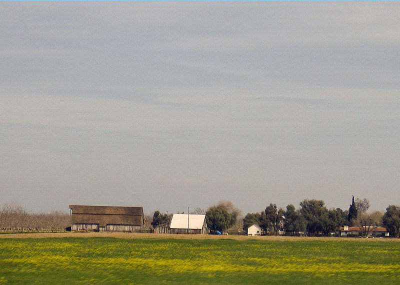 Farm by Patterson, CA along Interstate  5