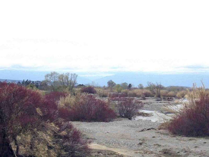 Stoney Creek south of Redding, CA