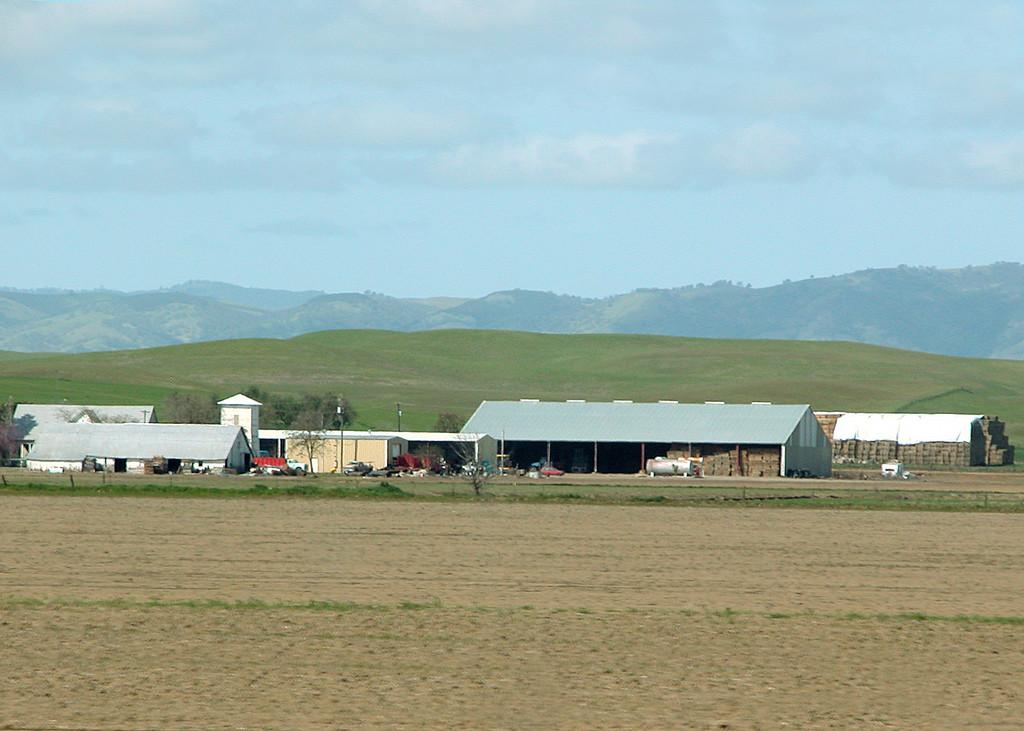 Farm land in the Sacramento Valley