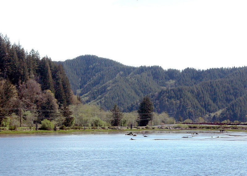 Woahink Lake just outside of Reedsport, OR