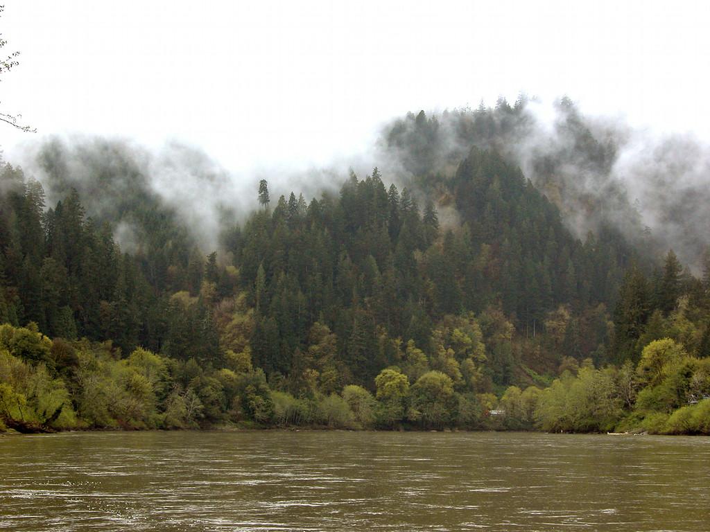 Umpqua River at Scottsburg Park