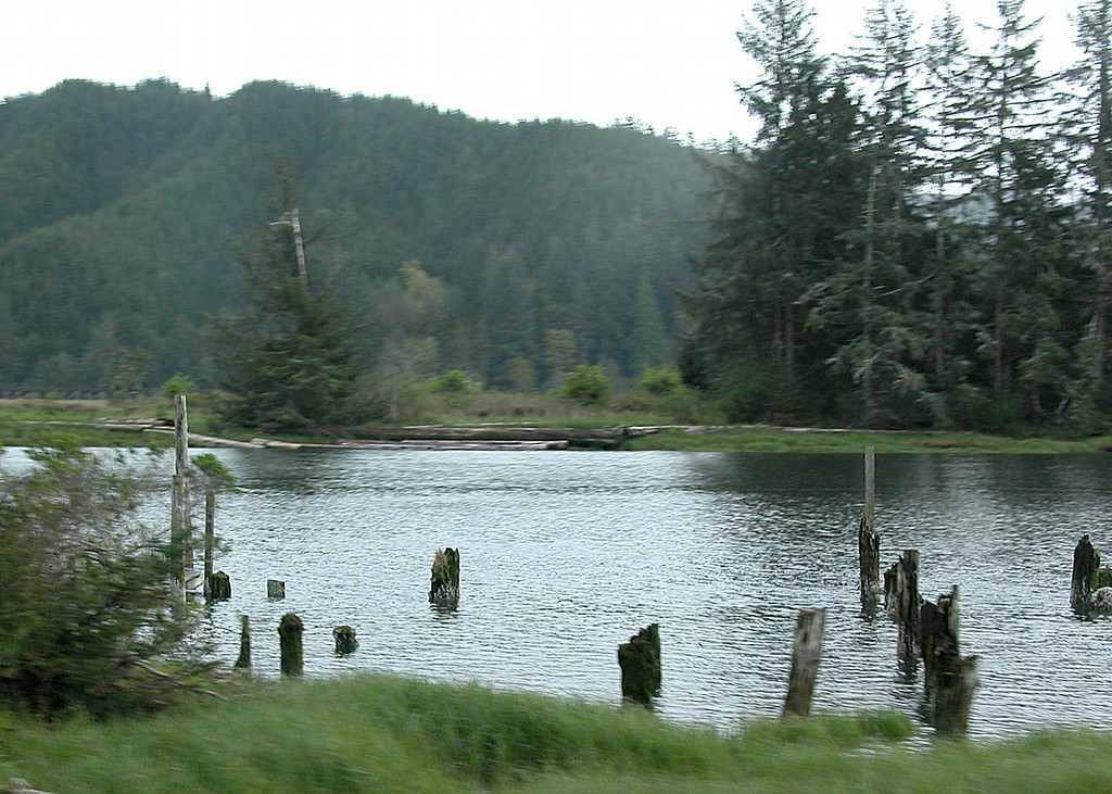 Along Route 126 heading back to Eugene, OR