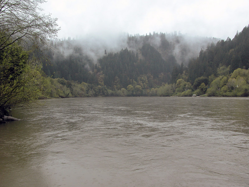 Umpqua River at Scottsburg Park
