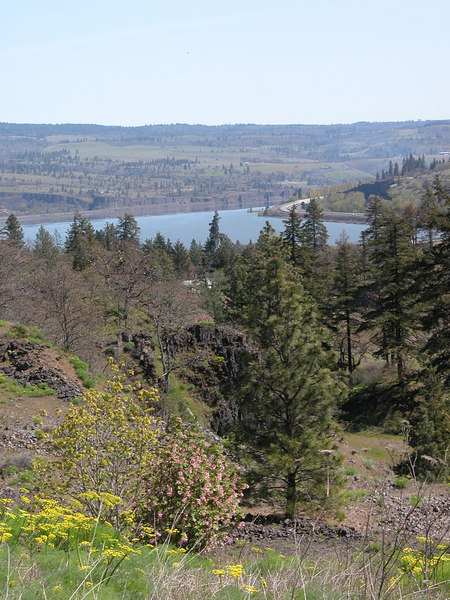 View from Mosier Hills