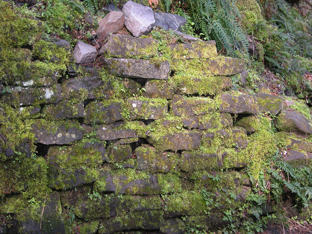 Rock wall at Multnomah Falls