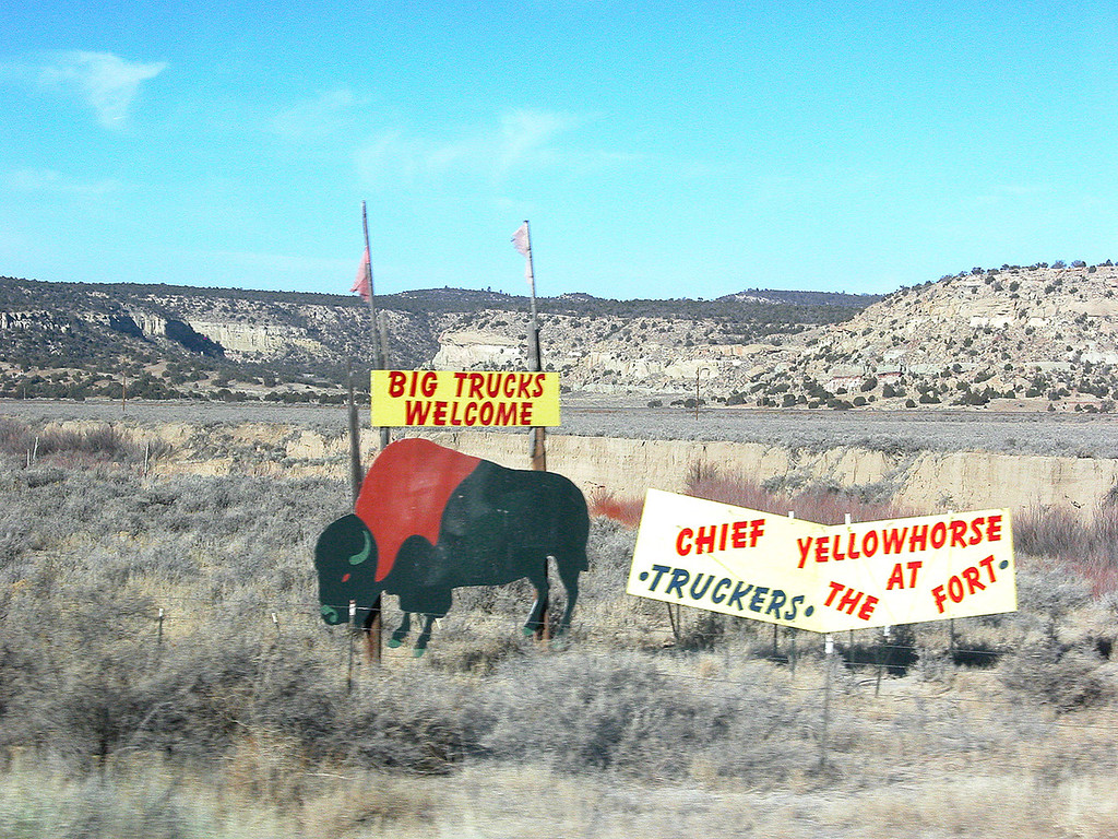 Buffalo sign along highway