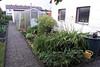 Uncle Rudi's garden.