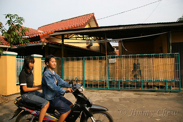 "<font color=""yellow"">You can find many female bikers in rural areas.</font><br>"