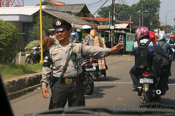 "<font color=""yellow"">A traffic police officer guiding traffic.</font><br>"