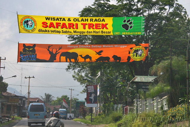 """<font color=""""yellow"""">On the way to Safari Park.</font><br>"""