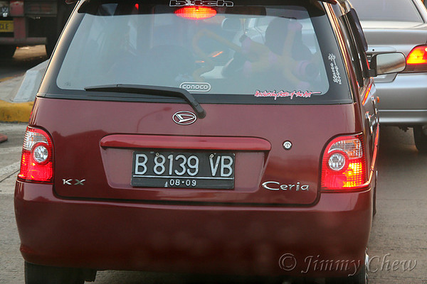 """<font color=""""yellow"""">Kancil in Malaysia.</font><br>"""
