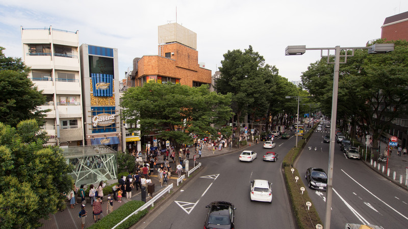 Looking away from the park/Meiji Shrine back down the Omotesando.