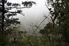 Mists enveloping the valley below.