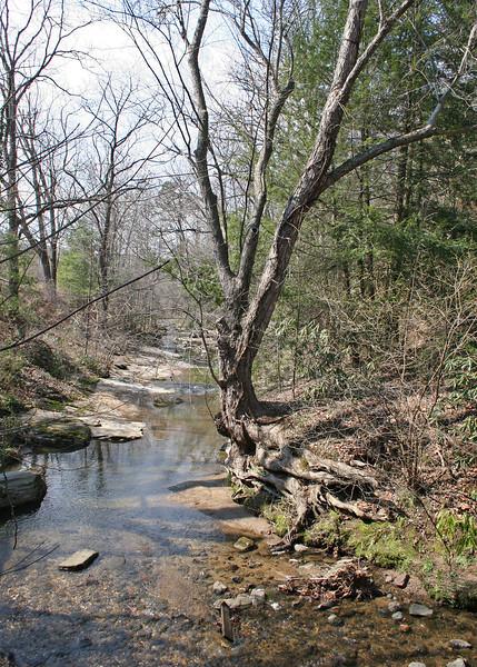 Glenn Creek